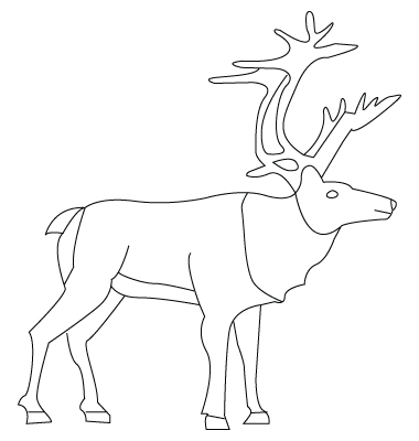 Moose drawing to color